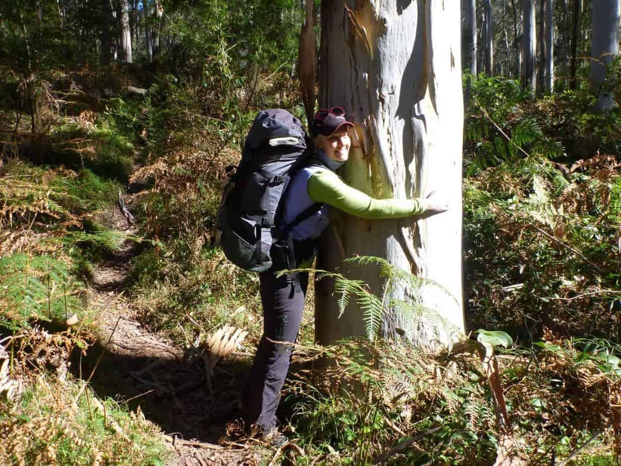 A tree hugger from way back!