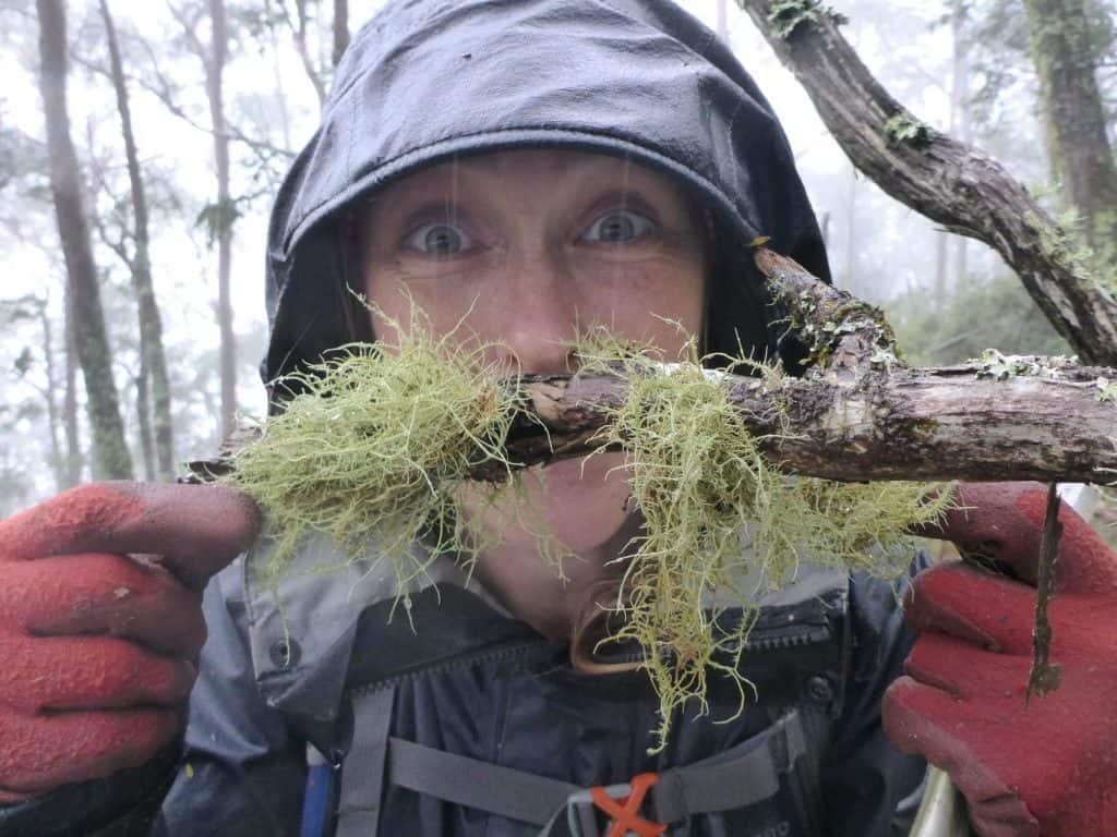 Three Peaks Moss Mo