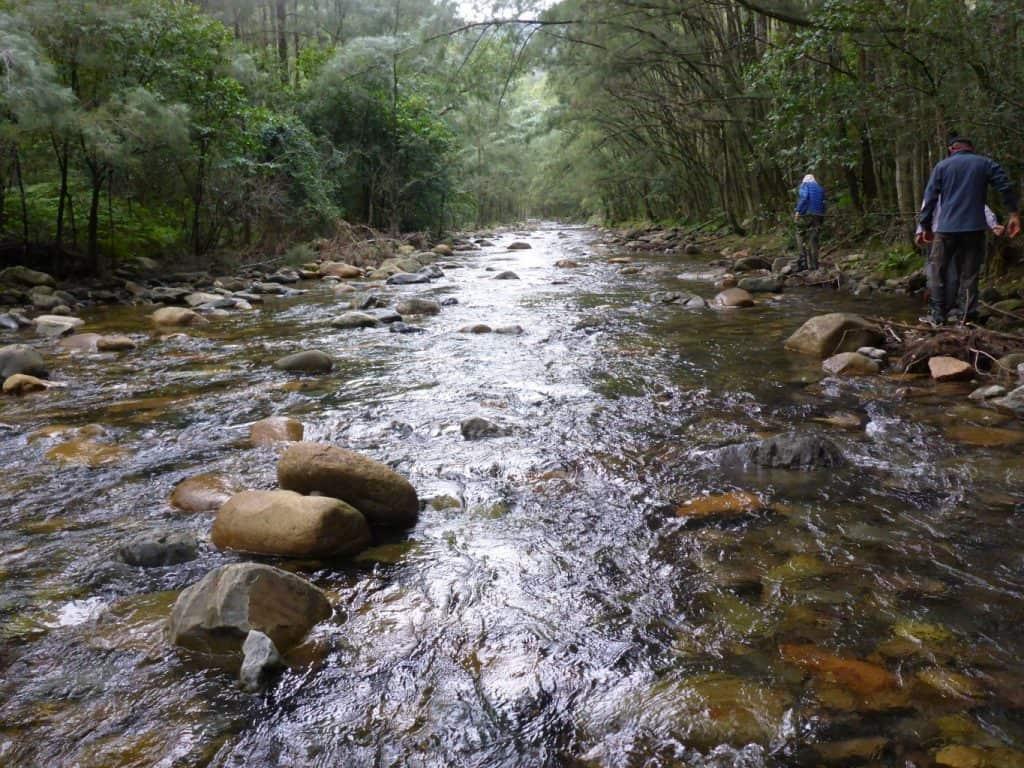 Three Peaks Kanangra Creek