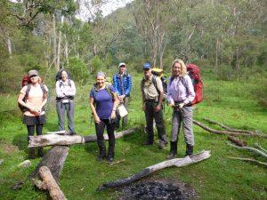 Three Peaks Whalania Creek Campsite