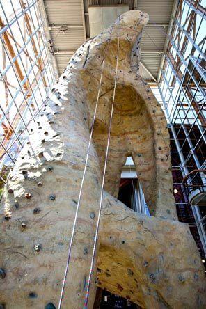 Climbing Wall inside REI Seattle
