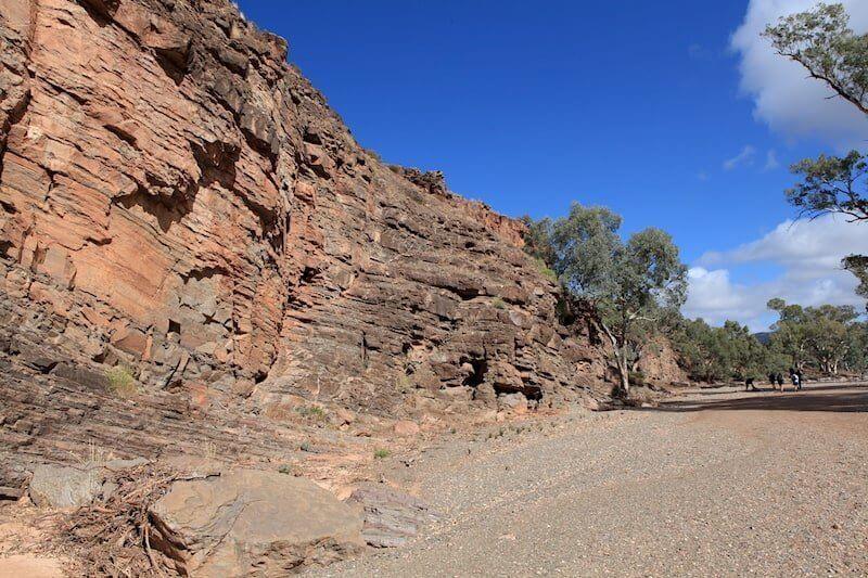 hiking flinders ranges