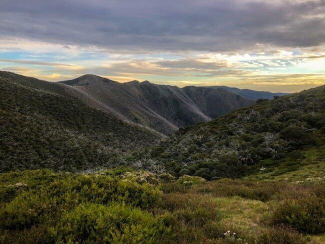 Mt Feathertop Bon Accord Spur