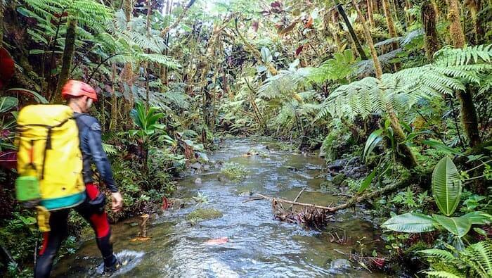 Hiking in Tahiti